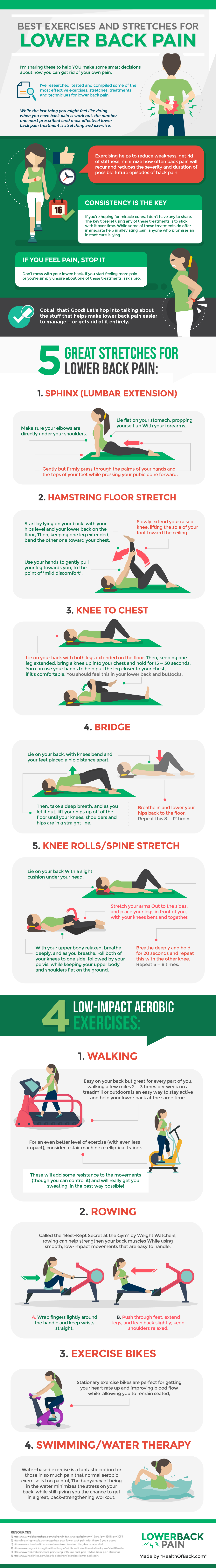 Best Stretches and Exercises for Lower Back Pain