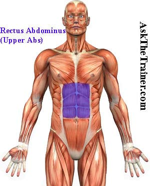 tube toe raises 6pack ab exercise videos six pack abs