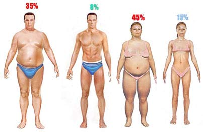 Body Composition is one of the 5 Basic Components