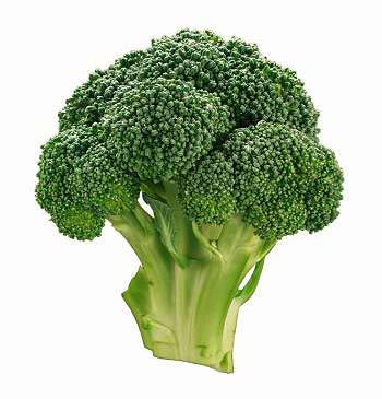 Broccoli Green Food