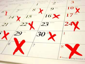 Personal Training Consultations - Training Schedule