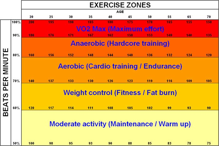 cardio fat burning zones