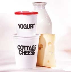 Dairy Products for Women over 40