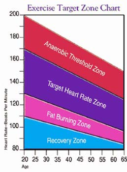 fat burning zone chart