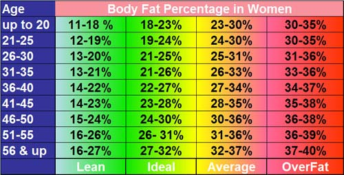 Body Fat Percentage in Women Chart