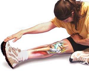 p90x flexibiility