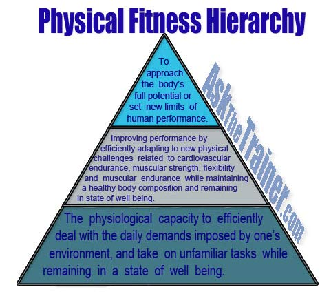 power physical fitness definition essay