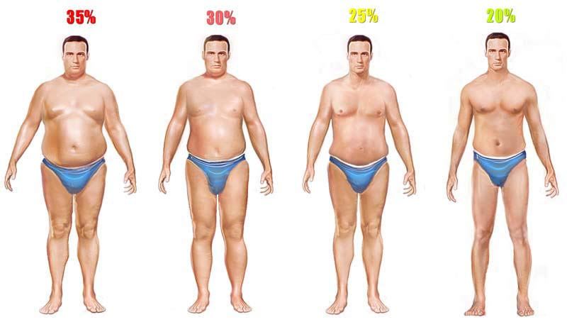 men-body-fat-high.jpg