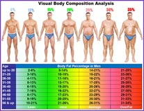 Mens Visual Body Fat Chart - Personal Trainers