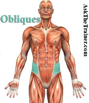 oblique exercise videos