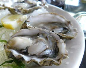 Oysters are an Aphrodisiac?