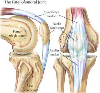 najlepsze ćwiczenia nóg staw rzepkowo-udowy
