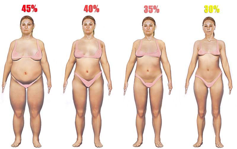 women-body-fat-high.jpg