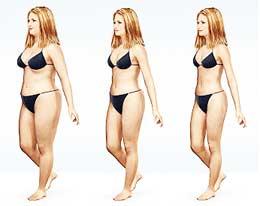 fat loss diagram: women