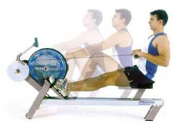 rowing workouts cardio training