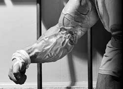 forearms exercise