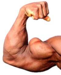 Best Compound Exercises for Biceps and Key Tips for Maximizing Growth