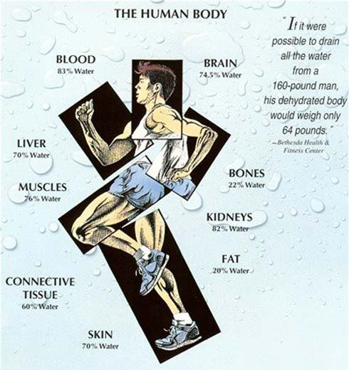 The Health Benefits of Drinking Water Daily
