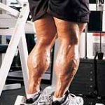Top 5 Calf Muscle Exercises