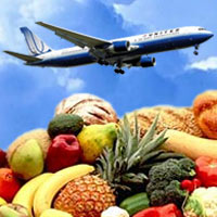 Eating Healthy While Traveling tips