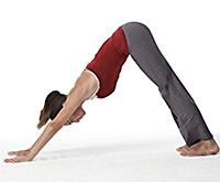 woman performing yoga pose - downward dog