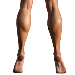 woman's calf muscles