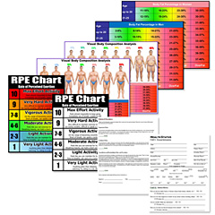 personal trianing forms charts bundle