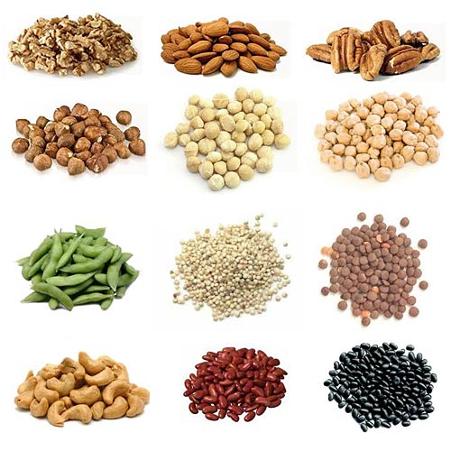 High Protein Vegetarian Foods Muscle Building