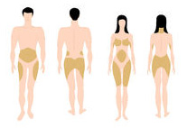 subcutaneous fat on men and women