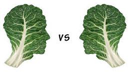 organic vs non organic produce