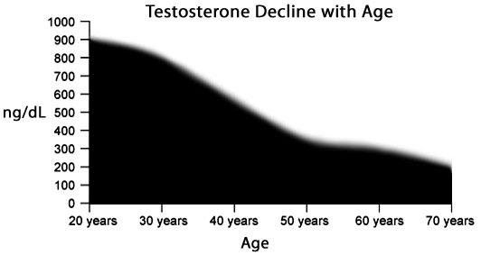 male testosterone decline age