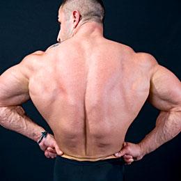 Mid-/Upper-Back – Traps, Rhomboids