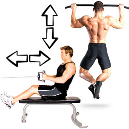 Train Your Back With Horizontal And Vertical Movements Equally