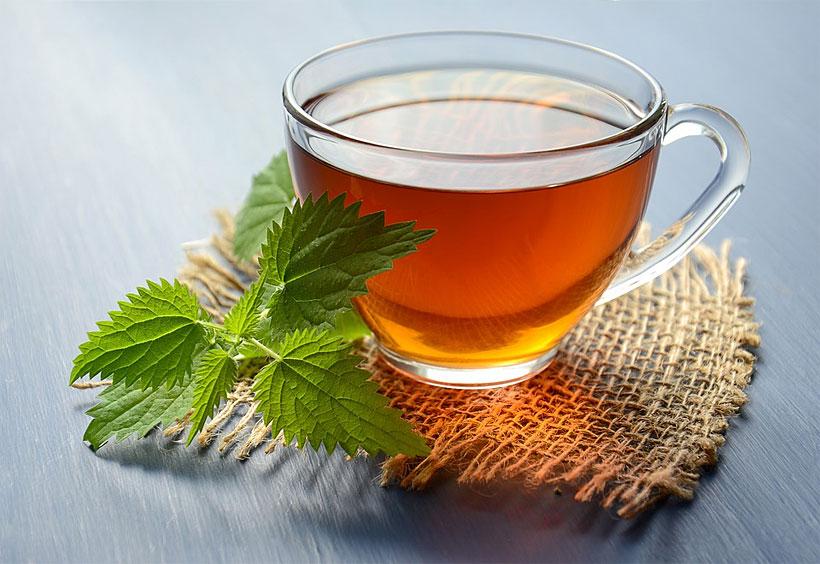 health benefits nettle tea