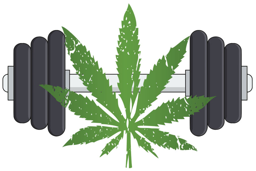 cannabis fitness effects